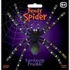 Elastyczna tarantula - Bendy Spider