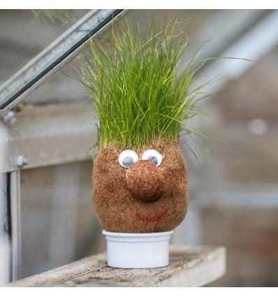 Pan Trawowłosy - Mr Grasshead