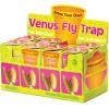 Wyhoduj Sobie Muchołówkę - Grow Your Own Venus Fly Trap